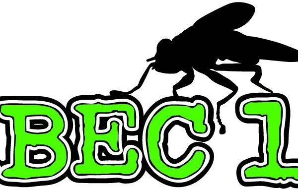 grüne Longboard Rollen von Abec 11